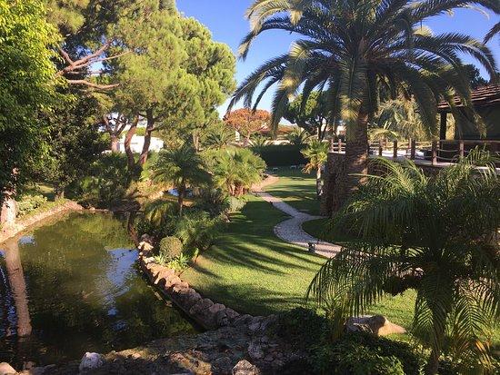 Falesia Hotel: photo5.jpg