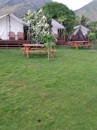 写真Camp Olowalu枚