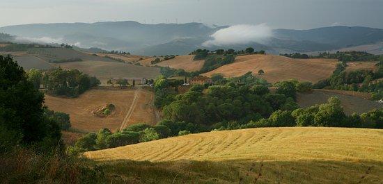 Casale Marittimo, İtalya: d´intorni della villa presso la tenuta ricrio