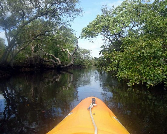Port Richey, FL: Most water ways are like this but exploring takes more effort.