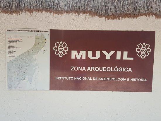 Quintana Roo, Mexique : 20161015_132705_large.jpg