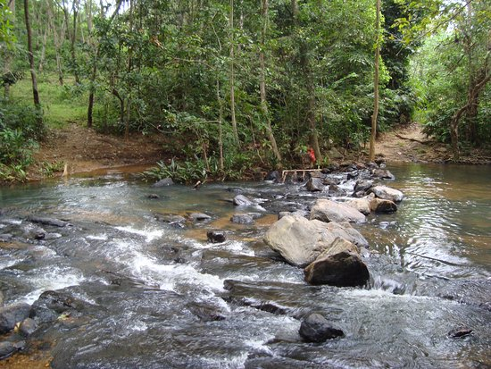 Kegalle, Sri Lanka: photo of down stream....there is a nice small waterfall in the upstream
