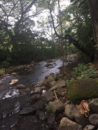 Kukuihaele, Havaí: photo1.jpg