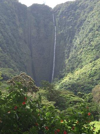 Kukuihaele, Havaí: photo2.jpg