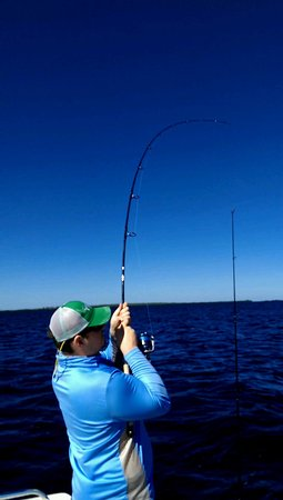 Cape Coral, FL: Ed bent up!
