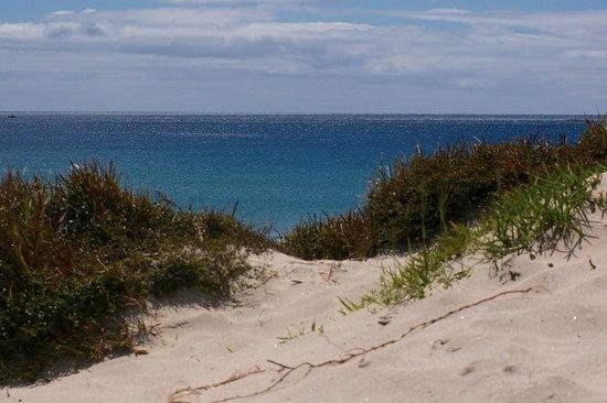 Mangawhai, Nueva Zelanda: Snorkeling day!
