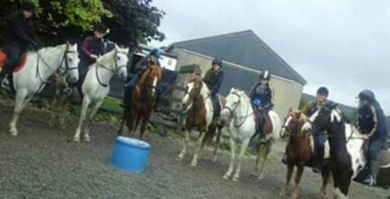 Kilfinane, Ιρλανδία: Ballyhoura Horse Trekking