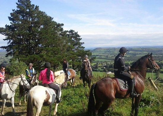 Kilfinane, Ireland: Ballyhoura Horse Trekking