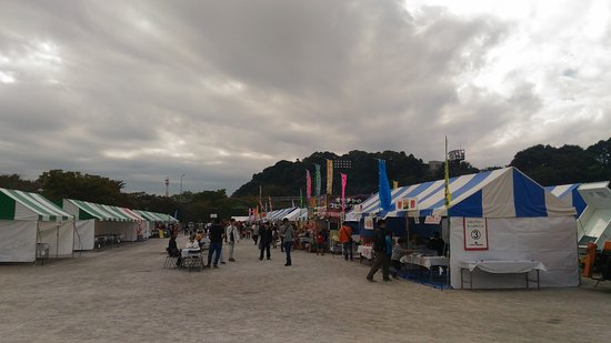 Yachiyo, اليابان: 八千代総合運動公園の八千代の祭、二日目、プロレスのデモンストレーションもやっている。