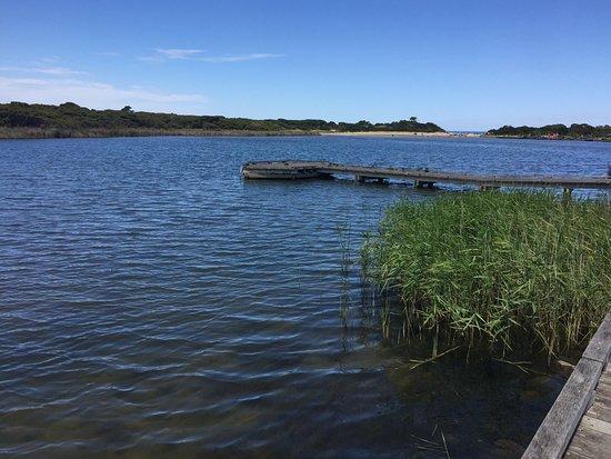 Anglesea, Australia: Peaceful & Tranquil