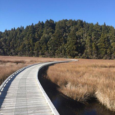 Okarito, นิวซีแลนด์: Beginning of the track