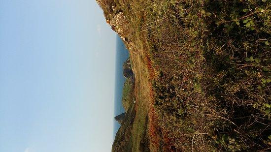 Lizard, UK: Views of kynance cove
