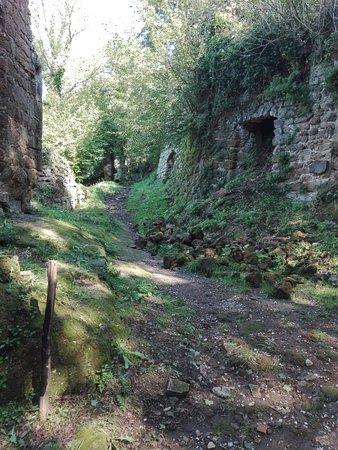 Canale Monterano, Italië: rovine