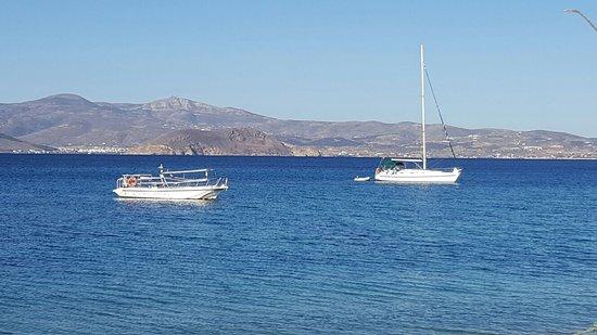 Blue Fin Divers Naxos Greece: IMG-20161014-WA0001_large.jpg