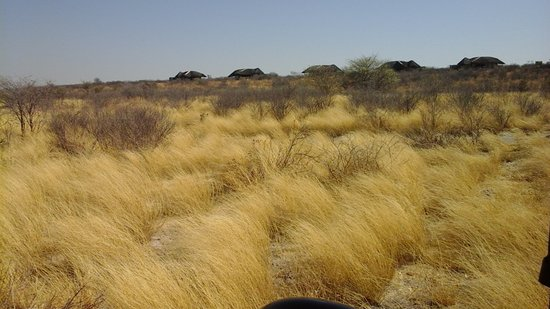 Central Kalahari Game Reserve, Botswana: The savannah with the camp on the ridge