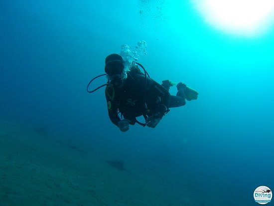 Techno Diving Lanzarote: photo taken by dive leader Julie(Techno Diving).