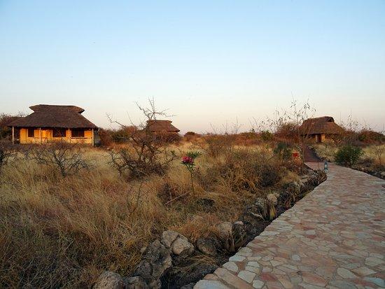 Lake Manyara National Park ภาพ