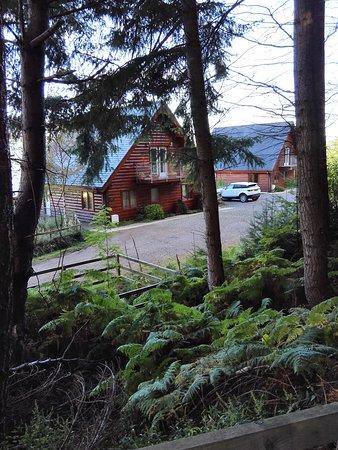 Lodges on Loch Ness: IMG_20161011_114459_large.jpg