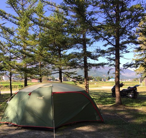 Hakuba Green Sports Forest : サイトから北アルプスを望む