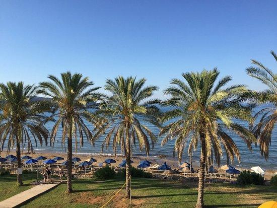 Alexandra Beach Resort: Näkymä rantaan