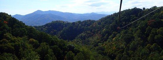 Navitat Canopy Adventures - Asheville Zipline: photo0.jpg