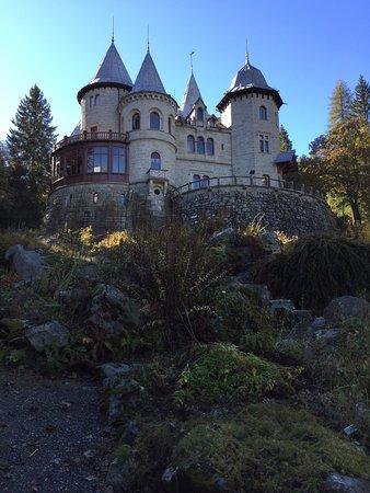 Gressoney Saint Jean, Italia: Castel Savoia visto dal piccolo giardino botanico