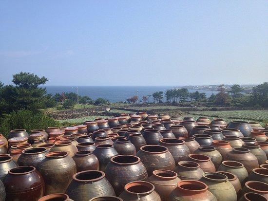 Boutique Hotel Villa De Aewol: 1000s of pottery for making bean paste, typical for Korea