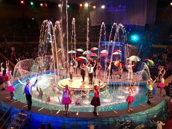 Zaporizhzhya State Circus