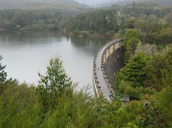 Healesville, Avustralya: Viewpoint