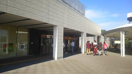 Kasama, Japan: DSC_1993_large.jpg