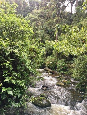 San Gerardo de Dota, Kosta Rika: photo2.jpg