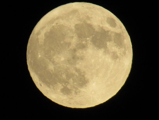 Midlothian, Virginie : and did I mention a full moon night.........ahhh