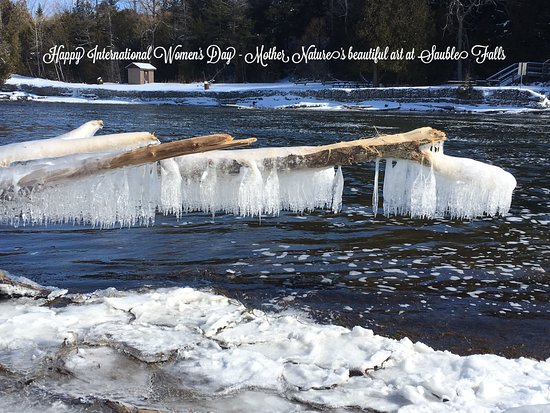 Wiarton, Canadá: Winter at Sauble Falls is beautiful!