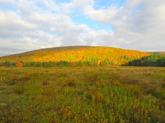 Margaree Forks, Kanada: Area around the cabin - 5km away on way to Beddeck, CP