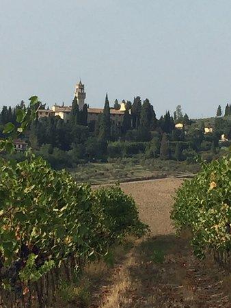 Montespertoli, Italy: biking along the vineyards