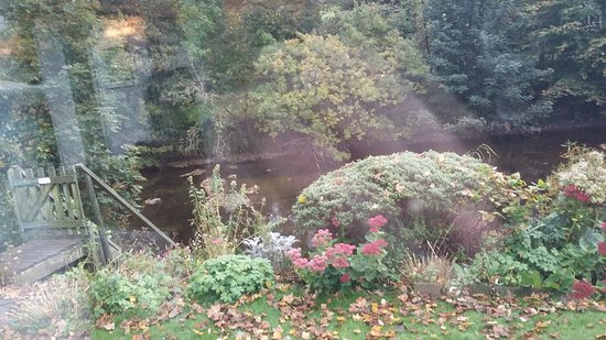 River Cottage: 20161016_094629_large.jpg