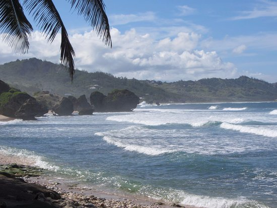 Saint Michael Parish, Barbados: Atlantic coast ..(one of the best point to surf )