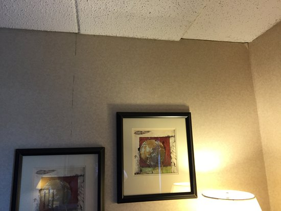 Holiday Inn St. Louis Airport: Mold in seams of the wallpaper and ceiling Room