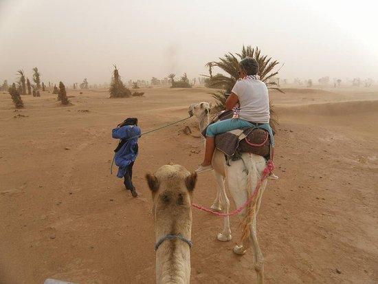 Naamani Groupe Nomadic Camp : Tempête de sable pour arriver au bivouac .