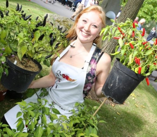 Ceres, UK: Chillies are seasonal fruit, we offer different experiences depending on the time of year you vi