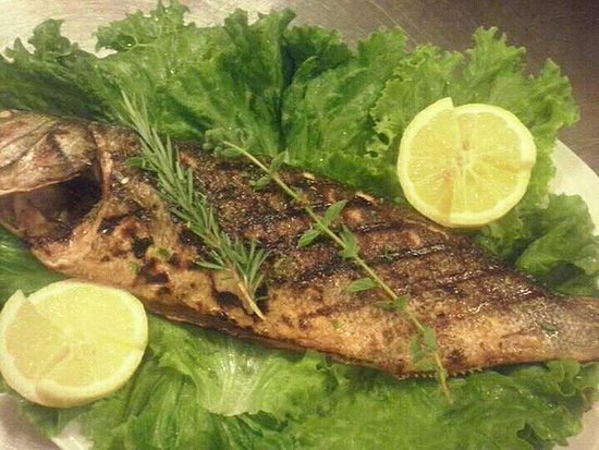 Souda, กรีซ: An amazing cooked fish, grilled!