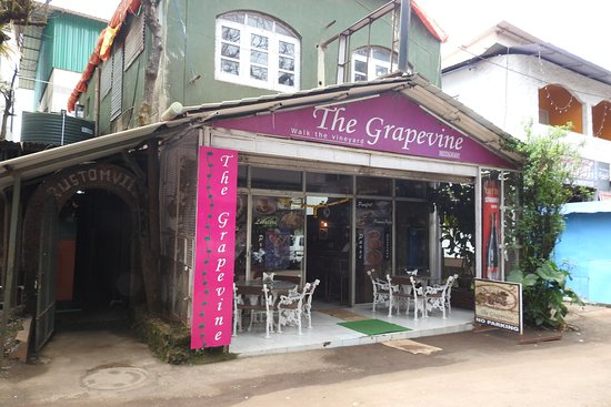 The Grapevine Restaurant Mahabaleshwar Picture Of The Grapevine