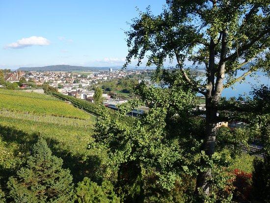 Hauterive, สวิตเซอร์แลนด์: Aussicht aus dem Zimmer 'Pinot Noir'.
