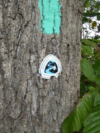Leesburg, VA: Potomac Heritage Trail