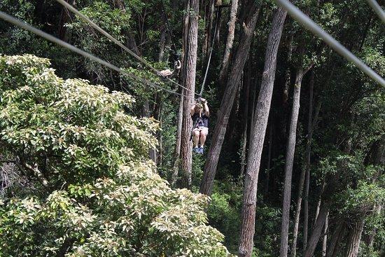 Hawi, ฮาวาย: Kohala Zip Line