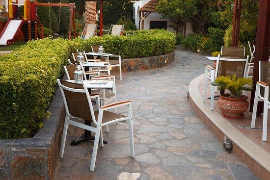Hotel Alianthos Garden: BAR