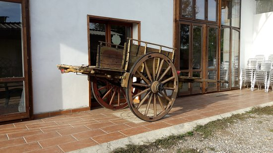 Busto Garolfo, İtalya: 20161016_161907_large.jpg