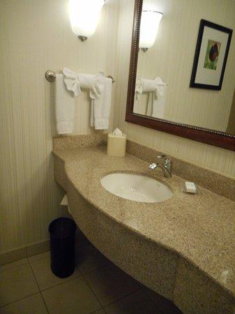 Hilton Garden Inn, Oxnard/Camarillo: sink