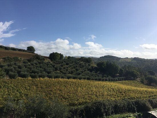 Ramazzano, Italia: Un we di autunno al Podere Caldaruccio
