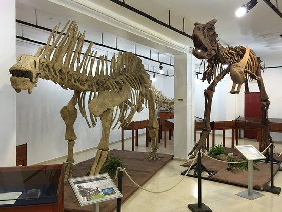 Museo Etnografico de Estepona